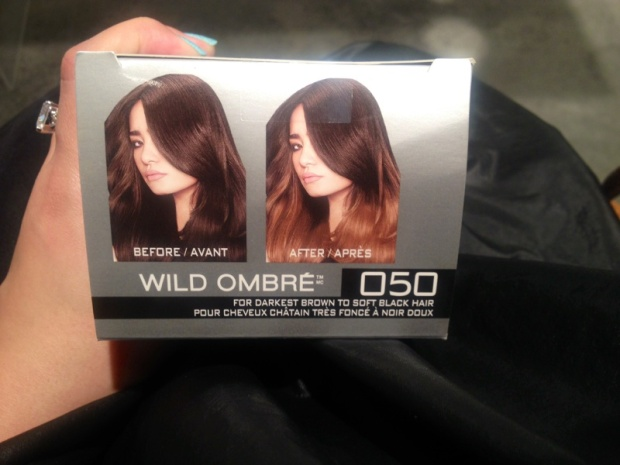 L'Oreal Paris Feria Wild Ombre at home kit
